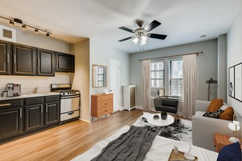 1140 N Lasalle Street Studio-1 Bed Apartment for Rent Photo Gallery 1