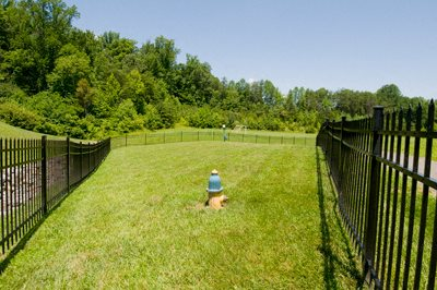 Private Fenced-off Dog Park at Brittany Commons Apartments, Virginia