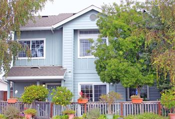 13 Chappel Loop 4 Beds Townhouse for Rent Photo Gallery 1