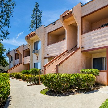 1101 Alturas Rd 1-2 Beds Apartment for Rent Photo Gallery 1