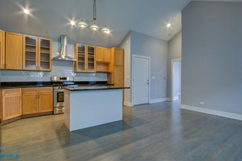 1706 S. Carpenter St. 1-3 Beds Apartment for Rent Photo Gallery 1