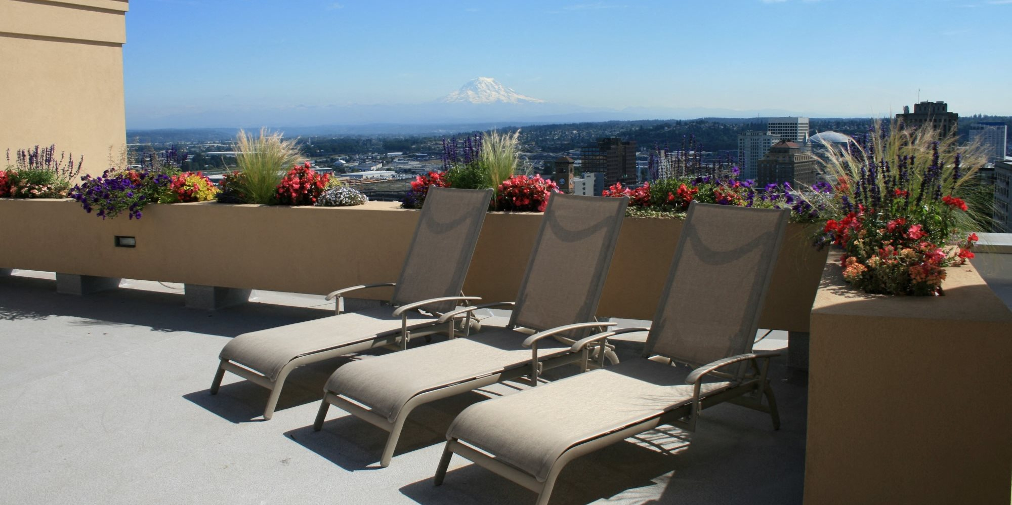 The Metropolitan Apartments Lounge Chairs and Planter