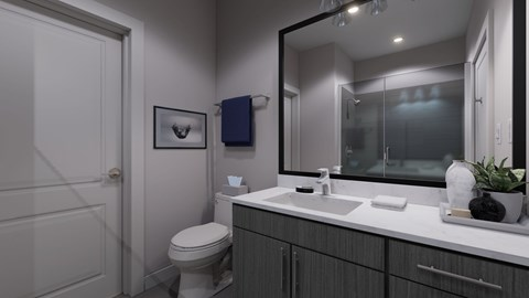 The Bryant Apartments | Stone Mountain Bathroom Finishes