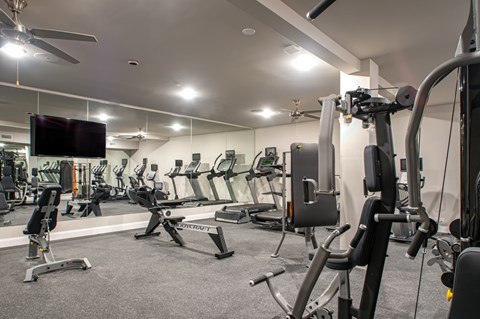 Large fitness center with high-tech equipment