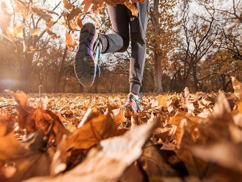 Running Trails at Edwards Mill Townhomes & Apartments, Raleigh, 27612