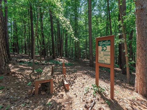 Running Trail Surrounded By Forest at Edwards Mill Townhomes & Apartments, Raleigh