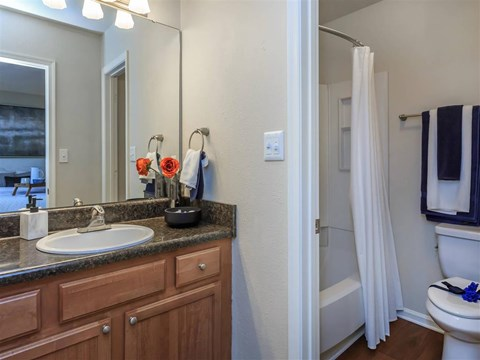 Modern Bathroom Fittings at Edwards Mill Townhomes & Apartments, Raleigh, North Carolina