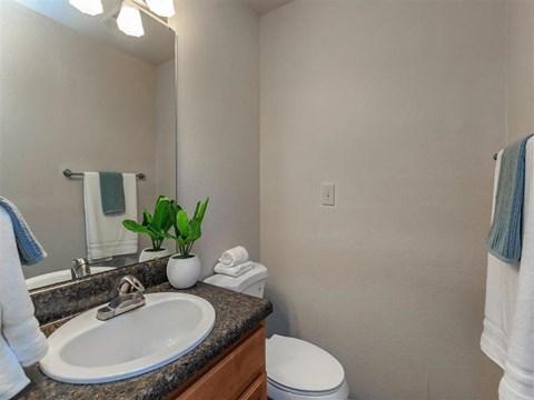 Bathroom Accessories at Edwards Mill Townhomes & Apartments, North Carolina