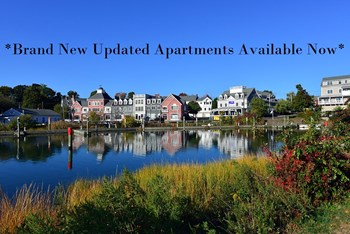 1 Schooner Lane 1 Bed Apartment for Rent Photo Gallery 1