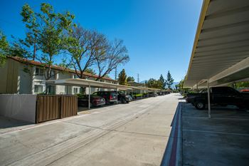1230 E Lugonia Ave 1-2 Beds Apartment for Rent Photo Gallery 1