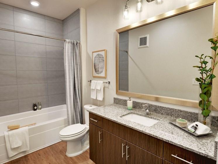altair-tech-ridge-luxury-apartments-bathroom