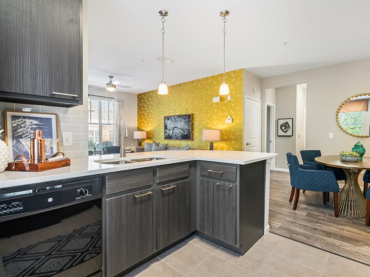 Fully-Equipped Kitchens at Millennium, Greenville, South Carolina