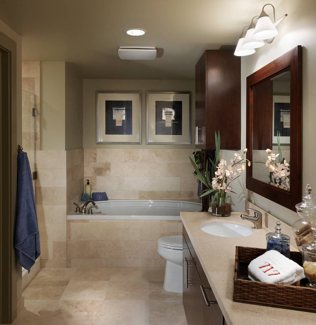 Apartment home bathroom