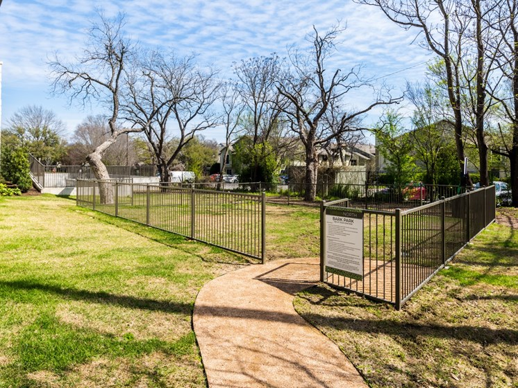 Gated leash-free dog park with large trees