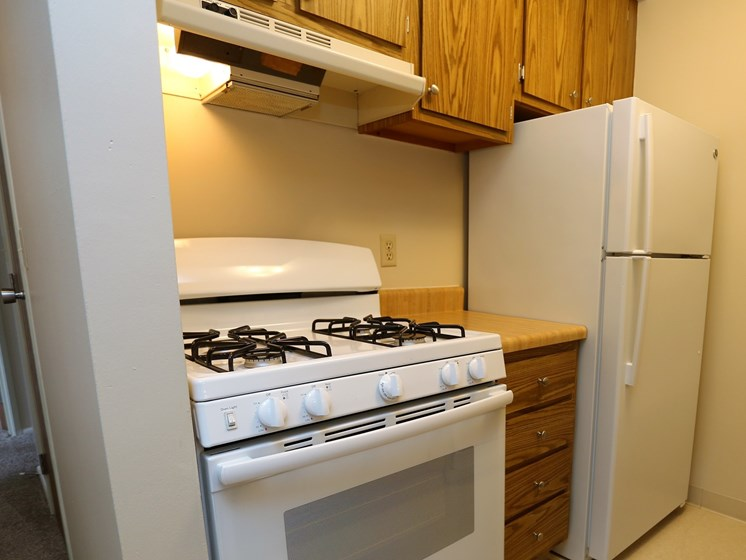 Efficient Appliances In Kitchen at Willowood Apartments, Ohio