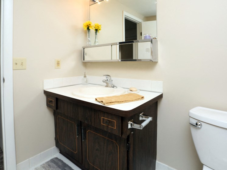 Bathroom With Extra Storage Space at Stone Pointe Apartments, Willoughby, OH