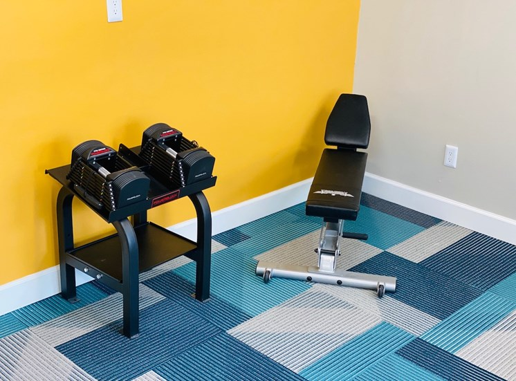 weight bench with adjustable weight set
