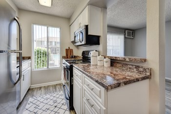 1313 Celeste Dr 1-3 Beds Apartment for Rent Photo Gallery 1
