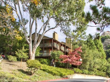 29843 Clearbrook Circle 1-3 Beds Apartment for Rent Photo Gallery 1