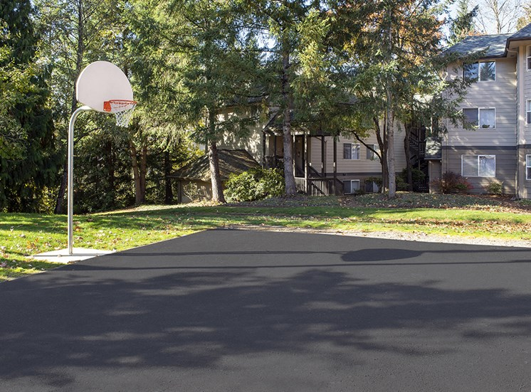 Creekside Apartments - Sport Court