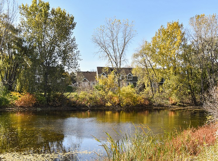 Bass Lake Hills Townhomes - Pond