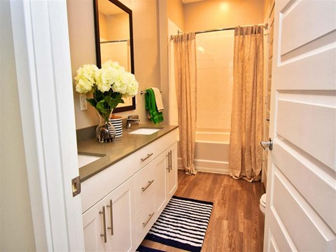 Luxurious Bathrooms at Pointe at Lake CrabTree, Morrisville, NC, 27560