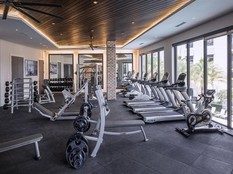 cardio machines and free weights