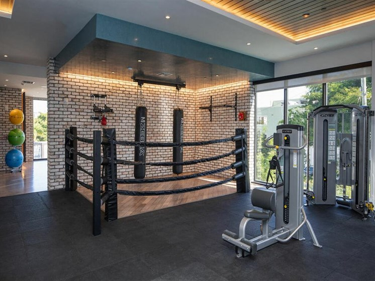 weighted machines and punching bags in fitness center