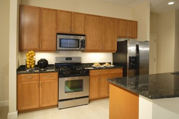 2323 Dulles Station Blvd. 1 Bed Apartment for Rent Photo Gallery 1