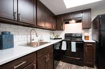 2475 Gray Falls Dr 1 Bed Apartment for Rent Photo Gallery 1