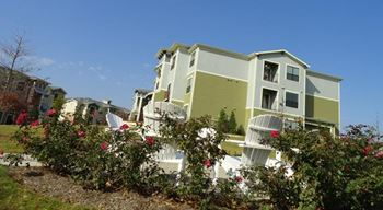 210 South Amberwood 1-2 Beds Apartment for Rent Photo Gallery 1