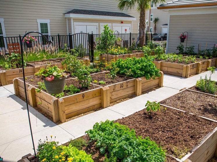 Private Garden Area at Altis Sand Lake, Orlando