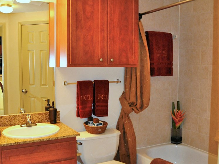Bathroom with Luxurious Garden Tub and Extra Storage at Falls at Copper Lake, Texas, 77095