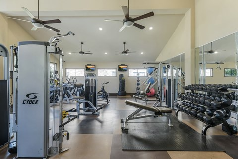 24 Hour Fitness Center with Free Weights at Yorktown Crossing, Houston, Texas