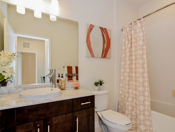 Bathroom With Bathtub at Altis at Grand Cypress, Lutz, 33549