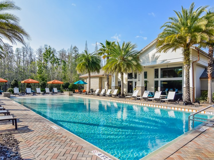 Swimming Pool With Relaxing Sundecks at Altis at Grand Cypress, Lutz, Florida