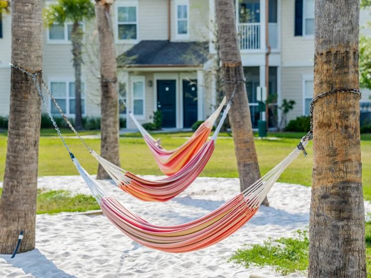 Hammock Garden at Altis at Grand Cypress, Lutz, FL