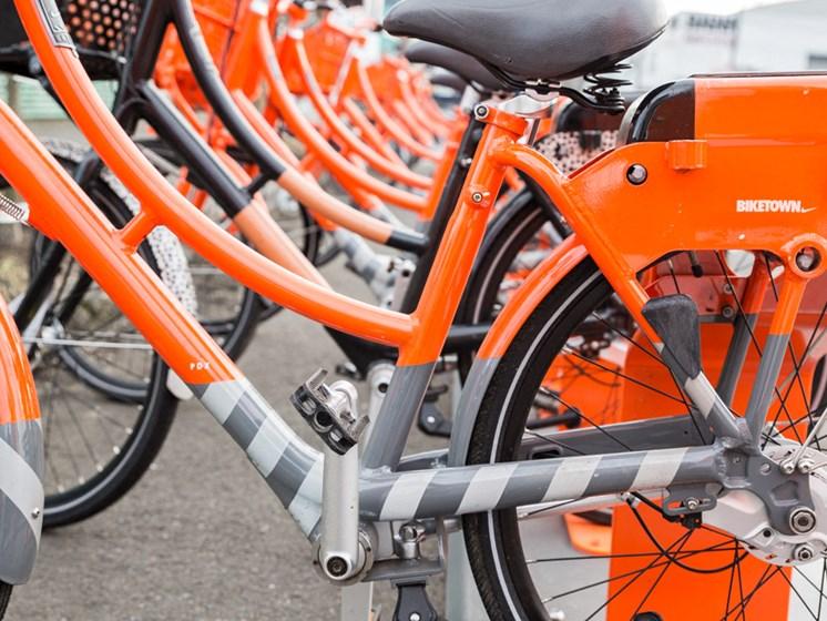 Row of Rental Bikes