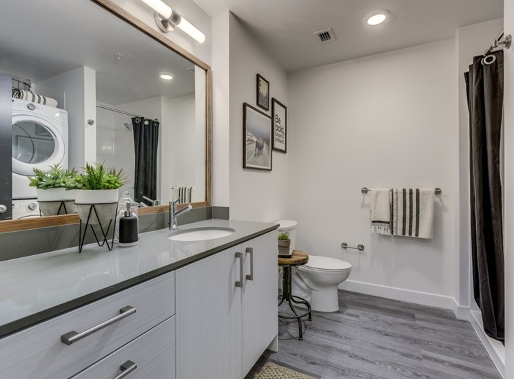 Goat Blocks Apartments Bathroom Sink and Shower