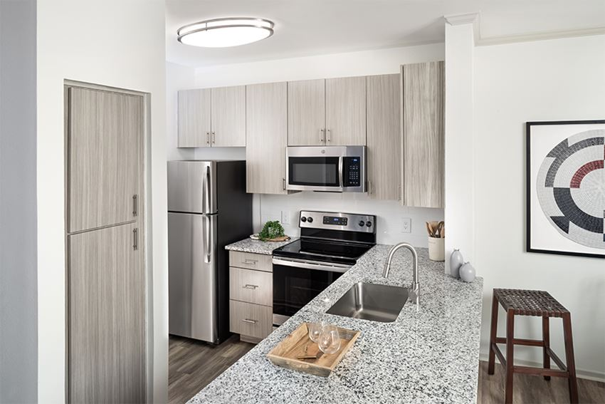 North Scottsdale Apartments - San Carlos - Beautifully renovated interiors with stainless steel appliances