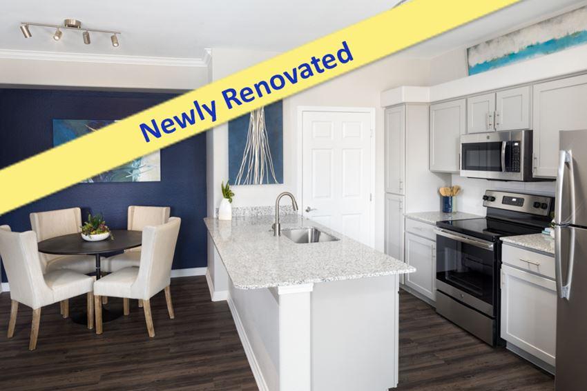 Villas at Stonebridge Ranch - McKinney, TX - Newly renovated kitchen