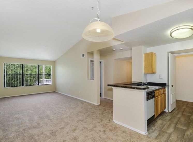 Kitchen and Living Room in Open Layout Floor Plan with Large Windows