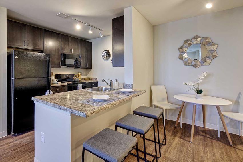 Modern kitchens with high-end finishes, black applicances