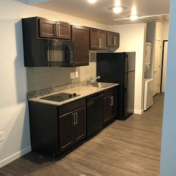 301 W Lenawee St Studio-2 Beds Apartment for Rent Photo Gallery 1