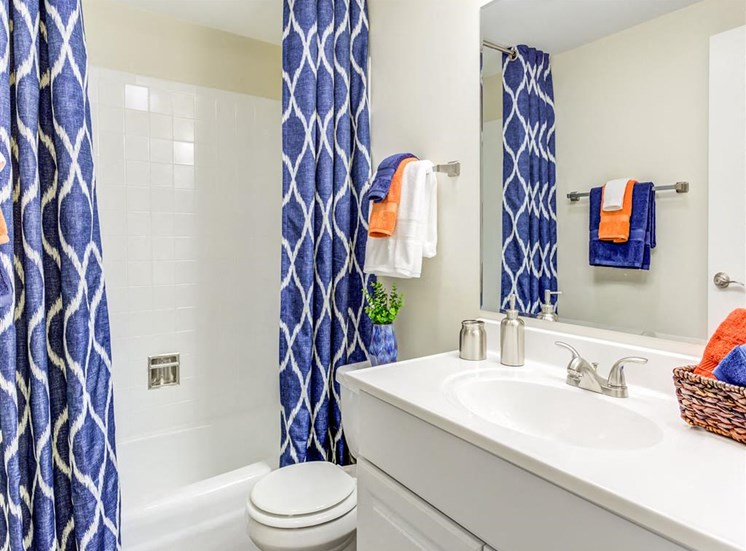 Spacious Bathroom at Orion ParkView, Mount Prospect, IL, 60056