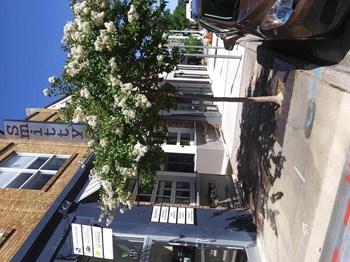 Yardi.Cafe.ILS.Web.Core.ViewModels.AddressViewModel Studio Apartment for Rent Photo Gallery 1