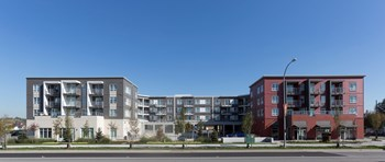 5738 175Th Street 1 Bed Apartment for Rent Photo Gallery 1