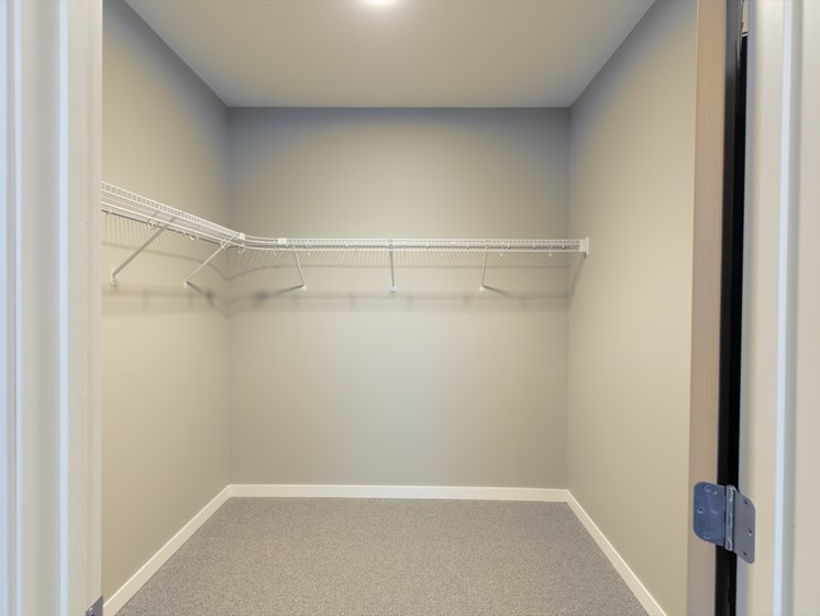 Enormous walk-in closets