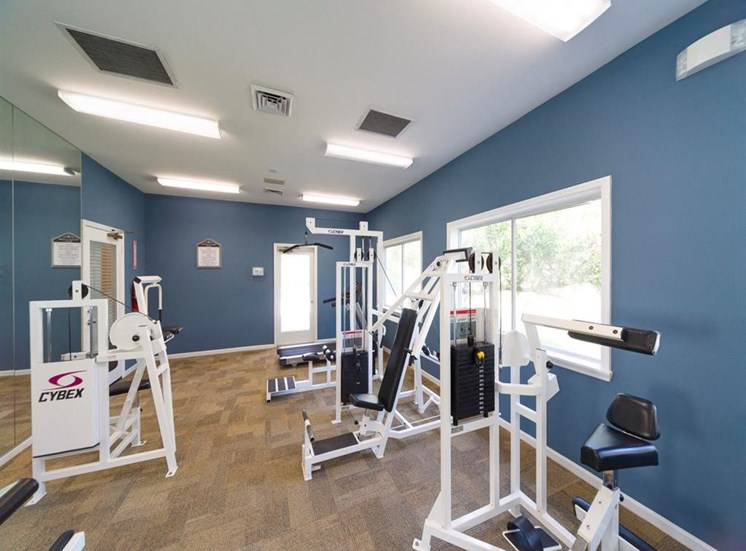 Fitness Center With Modern Equipment at Holly Cove Apartments, Orange Park, FL, 32073
