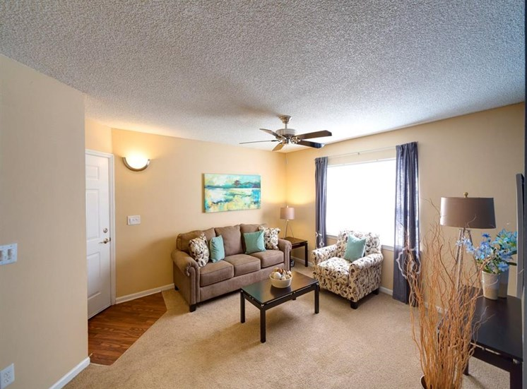 Decorated Living Room With Natural Light at Holly Cove Apartments, Orange Park, 32073